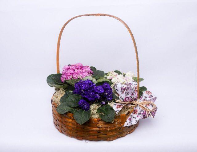 Cesta de Flores Violetas