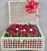 rosas no bau