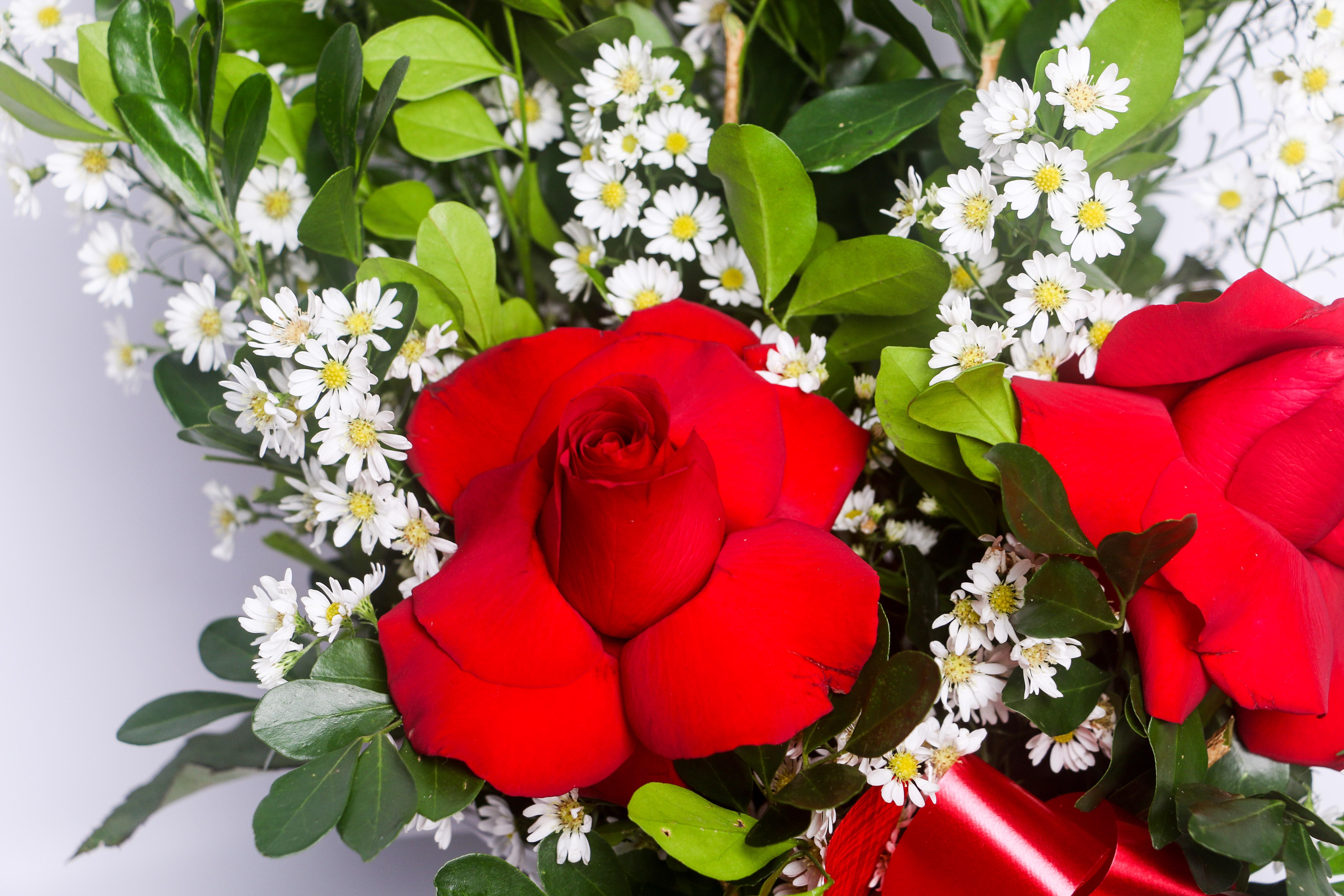 arranjo delicadeza de rosas 2